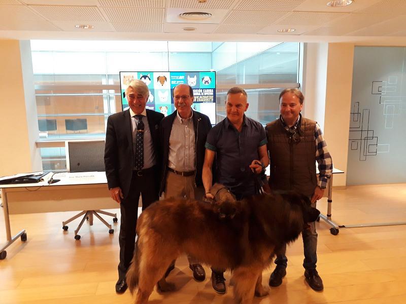 El domingo 22 de abril cita con la exposición canina internacional de Gipuzkoa en Ficoba