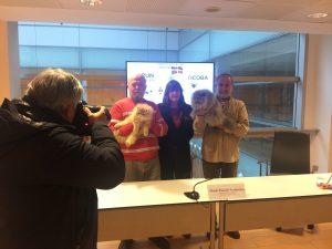 Plus de 250 chats se réuniront à Ficoba à l'occasion de la XIIIe Exposition Internationale Féline