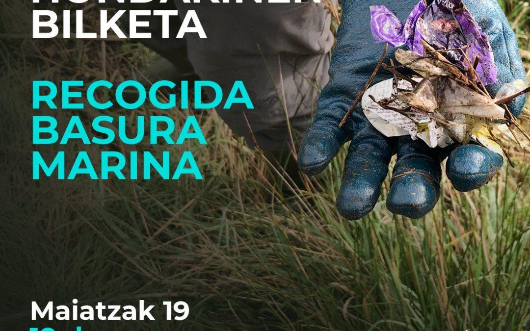 Itsas-zabor  bilketa:  igandea,  maiatzaren  19an,  Bioterra  azokaren  jardueren  barruan